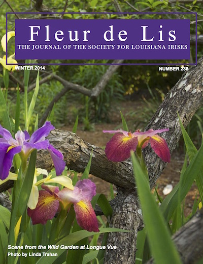 The cover of the Fleur de Lis magazine